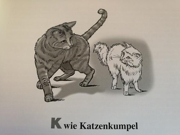 Kratsser-Prinzip K